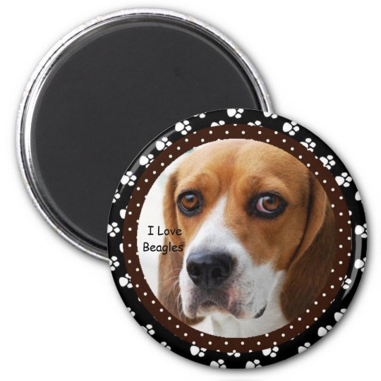I love Beagles  Magnet
