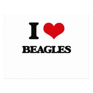 I Love Beagles Post Card