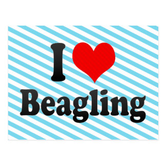 I love Beagling Postcard