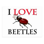 I Love Beetles Post Cards