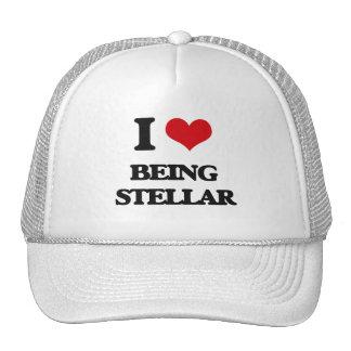 I love Being Stellar Mesh Hats