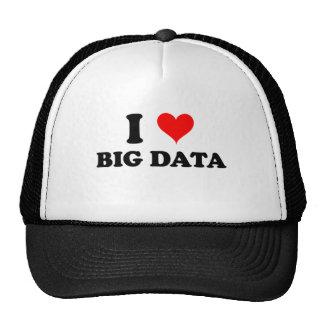 I Love Big Data Mesh Hat