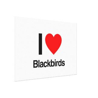 i love blackbirds gallery wrap canvas