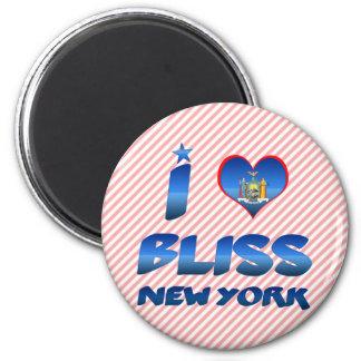 I love Bliss, New York Refrigerator Magnet
