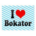 I love Bokator Postcard