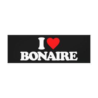 I LOVE BONAIRE STRETCHED CANVAS PRINTS