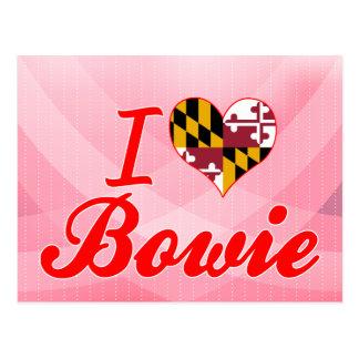 I Love Bowie, Maryland Postcard