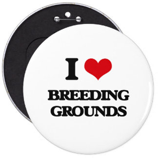 I Love Breeding Grounds Pins