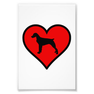 I Love Brittany Spaniel Dog Silhouette red Heart Photo Art