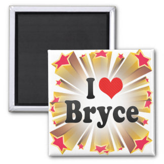 I Love Bryce Magnets