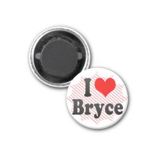 I love Bryce Fridge Magnets