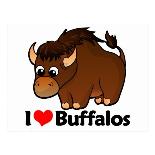 I Love Buffalos Postcard