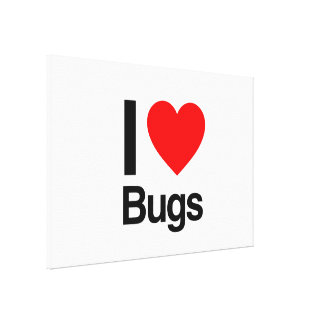 i love bugs stretched canvas prints
