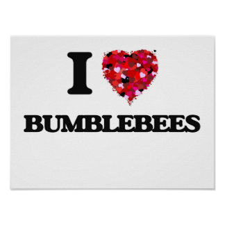 I Love Bumblebees Poster
