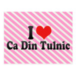 I Love Ca Din Tulnic Postcard