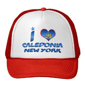 I love Caledonia, New York Mesh Hats