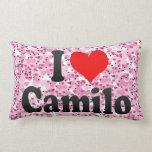 I love Camilo Pillows
