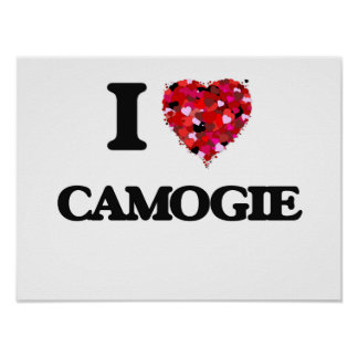 I Love Camogie Poster