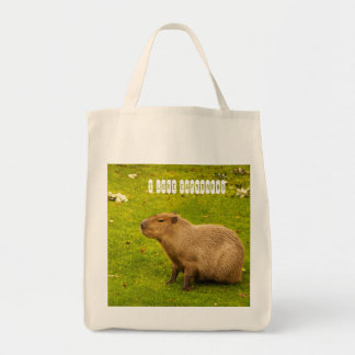 I love Capybaras Bag