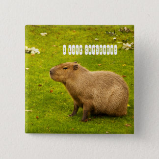 I love Capybaras Button