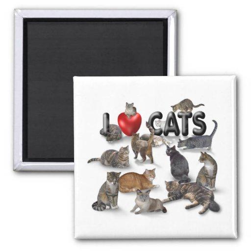 I love Cats Fridge Magnet