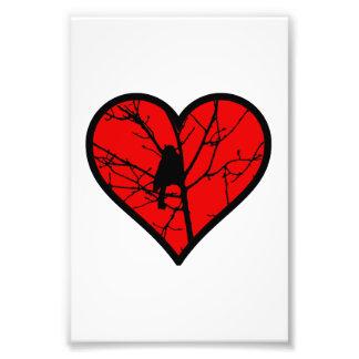 I Love chickadees, watching Birds Silhouette Heart Photo Art