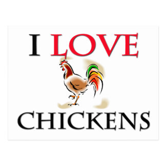 I Love Chickens Post Card