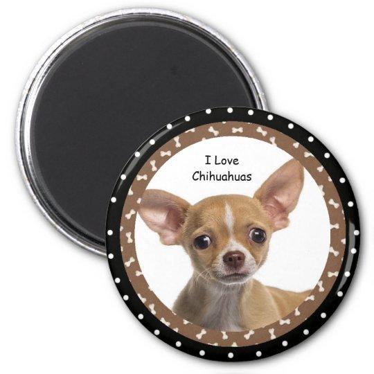 I love Chihuahuas 2 Magnet