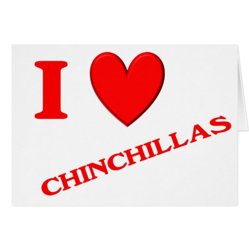 I Love Chinchillas Card