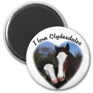 I love clydesdales magnet