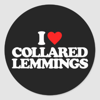 I LOVE COLLARED LEMMINGS STICKER