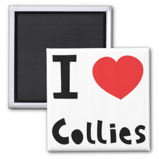 I love Collies Magnets