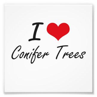 I love Conifer Trees Artistic Design Photograph