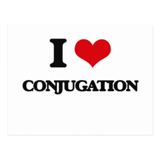 I love Conjugation Postcard