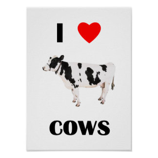 I Love Cows Poster