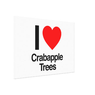 i love crabapple trees stretched canvas prints