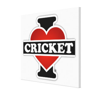 I Love Cricket Stretched Canvas Print