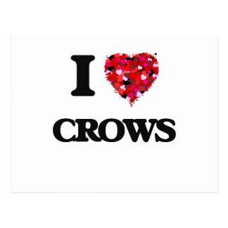 I love Crows Postcard