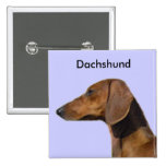 I Love Dachshunds Pins