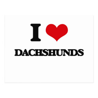 I love Dachshunds Post Cards
