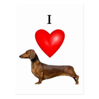 I Love Dachshunds Postcard