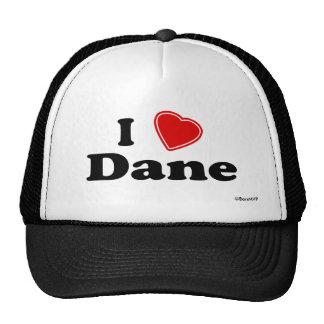 I Love Dane Mesh Hat