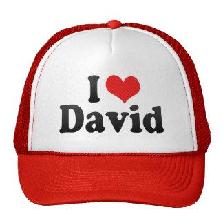 I Love David Cap