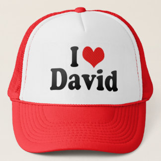 I Love David Trucker Hat