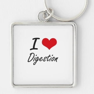 I love Digestion Silver-Colored Square Key Ring