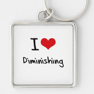 I Love Diminishing Keychain