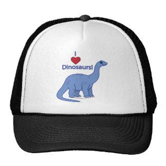 I Love Dinosaurs: Apatosaurus Hat