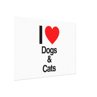 i love dogs and cats gallery wrapped canvas