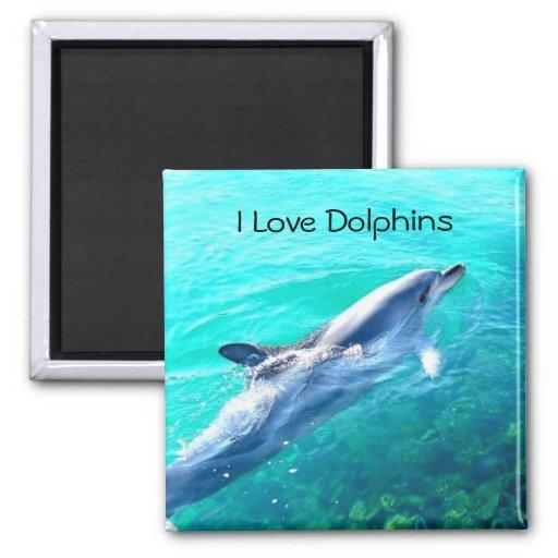I Love Dolphins Magnet Refrigerator Magnet