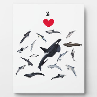 I love dolphins - Master the dolphins Display Plaques